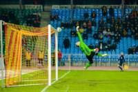 Арсенал - Амкар. 23.11.2014, Фото: 98