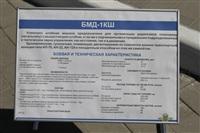 Празднование 69-й годовщины победы в Великой Отечественной войне на площади Победы. Тула, Фото: 31