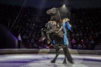 Туляков приглашают на новогоднее представление «Ёлка в цирке», Фото: 76