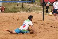 Пляжный волейбол в Барсуках, Фото: 147