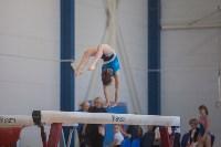 Первенство ЦФО по спортивной гимнастике, Фото: 54