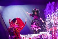 Шоу фонтанов «13 месяцев»: успей увидеть уникальную программу в Тульском цирке, Фото: 242