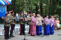 День города Щекино, Фото: 15