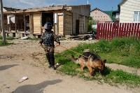 В Плеханово начали сносить дома в цыганском таборе, Фото: 91