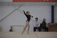 Открытый турнир по спортивной гимнастике. 23-30 ноября 2013, Фото: 3