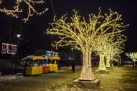 Новогодняя столица России, Фото: 108