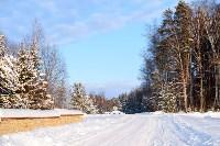 Снежное Поленово, Фото: 3