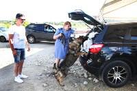 """Тульские полицейские работают на """"Дикой Мяте"""", Фото: 3"""