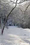Зимняя сказка Платновского парка, Фото: 1