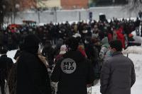 В Туле около 200 человек пришли на несанкционированный митинг, Фото: 13