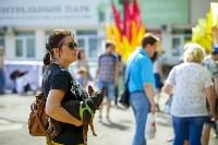 В Центральном парке Тулы проходит фестиваль помощи животным, Фото: 20
