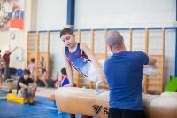 Мужская спортивная гимнастика в Туле, Фото: 24