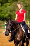 Новые лошади для конной полиции в Центральном парке, Фото: 12