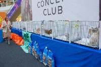 Выставка кошек в Туле, Фото: 40