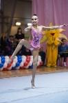 Соревнования по художественной гимнастике 31 марта-1 апреля 2016 года, Фото: 137