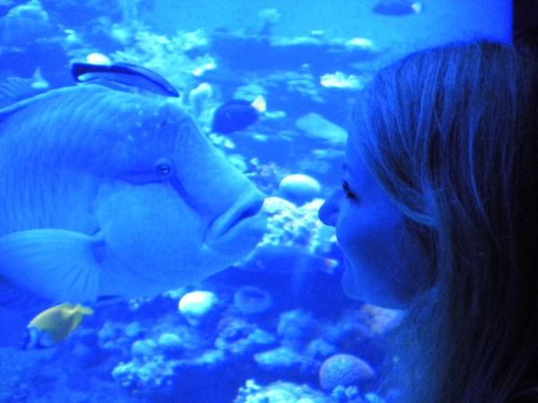 Рыбка просит поцелуй.))