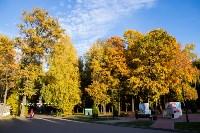 Золотая осень в Туле-2019, Фото: 36