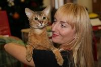 Выставка кошек. 21.12.2014, Фото: 18