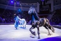 Туляков приглашают на новогоднее представление «Ёлка в цирке», Фото: 85