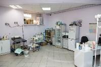 В какой ветеринарной клинике  лечить своего питомца, Фото: 9