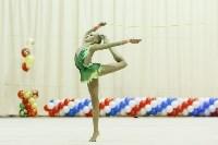 Художественная гимнастика. «Осенний вальс-2015»., Фото: 36
