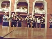 Тульские гармонисты награждены дипломом на Всероссийском конкурсе, Фото: 6