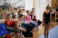 Спортивная гимнастика в Туле 3.12, Фото: 154