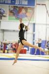 Спортивная гимнастика в Туле 3.12, Фото: 94