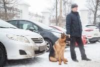 Всероссийская выставка собак 2017, Фото: 62