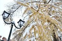 Снежная Тула. 15 ноября 2015, Фото: 54
