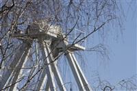Монтаж колеса обозрения в ЦПКиО. 25 февраля 2014, Фото: 7
