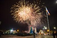 Фейерверк в честь 75-летия обороны Тулы, Фото: 15