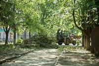 В Туле началось благоустройство скверов и дворов, Фото: 3