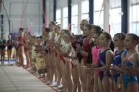 Соревнования по спортивной гимнастике на призы Заслуженных мастеров спорта , Фото: 6