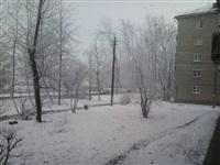 Метель 2 апреля., Фото: 7