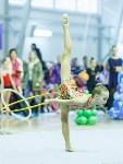 Кубок общества «Авангард» по художественной гимнастики, Фото: 73