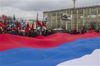 В Туле проходит митинг в поддержку Крыма, Фото: 9