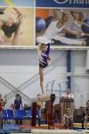 Спортивная гимнастика в Туле 3.12, Фото: 126