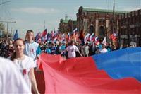 Тульская Федерация профсоюзов провела митинг и первомайское шествие. 1.05.2014, Фото: 8