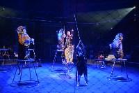 Цирковое шоу, Фото: 134