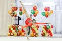 Художественная гимнастика. «Осенний вальс-2015»., Фото: 132