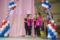 Соревнования по художественной гимнастике 31 марта-1 апреля 2016 года, Фото: 44
