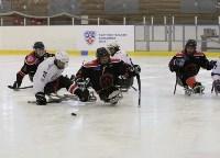 «Матч звезд» по следж-хоккею в Алексине, Фото: 16