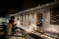 Один день в музее Археологии Тульского кремля, Фото: 1