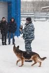 """""""Студенческий десант"""" - 2017., Фото: 3"""