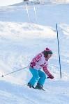 Первый этап чемпионата и первенства Тульской области по горнолыжному спорту, Фото: 27