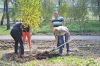 В Пролетарском районе высадили молодые деревья, Фото: 13