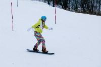I-й этап Кубка Тулы по горным лыжам и сноуборду., Фото: 27