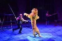 Цирковое шоу, Фото: 148