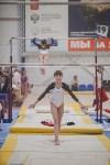 Первенство ЦФО по спортивной гимнастике, Фото: 134